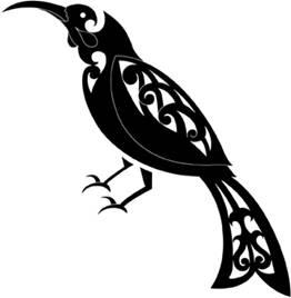Maori Magpie