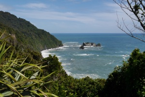 Tasman Sea from Knight's Point